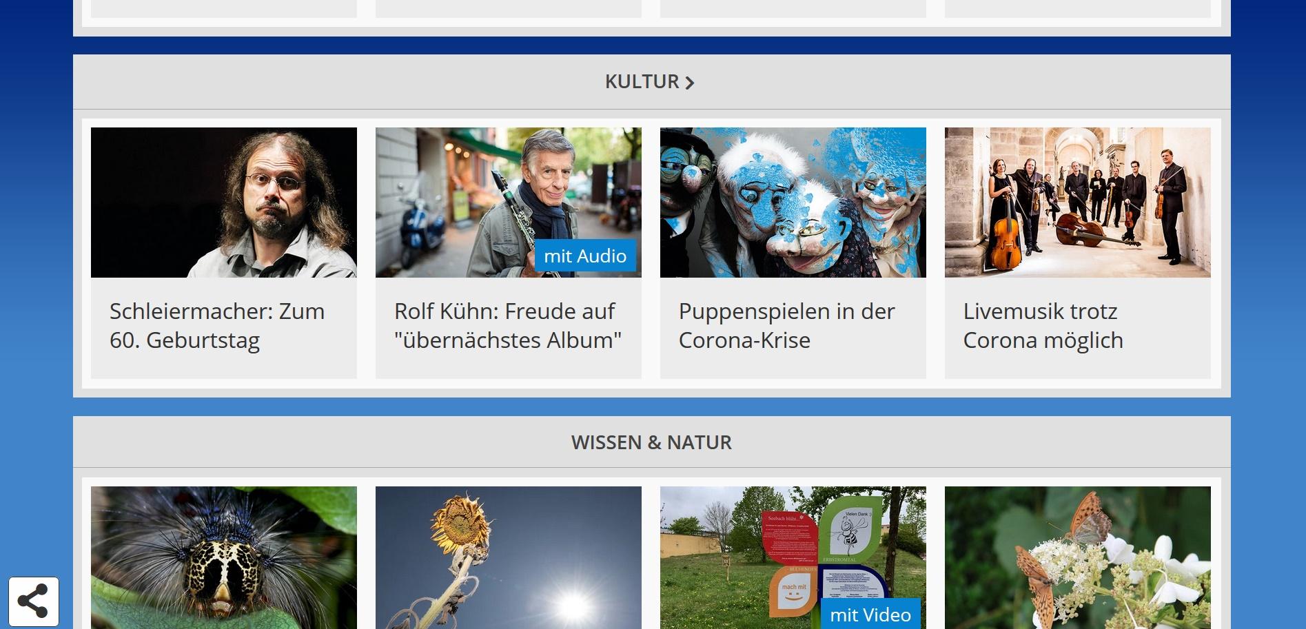 Screenshot 'Figurentheater am Livestream: Wie eine Puppenspielerin aus Halle die Corona-Krise meistert', Artikel von Luca Deutschlaänder, MDR Sachsen-Anhalt